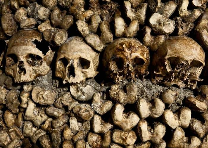Skulls and bones in The Capucchin Catacombs, Rome Italy