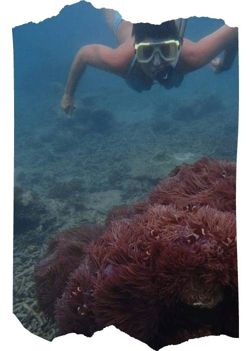 solo female traveller snorkeling in the Parinthian islands